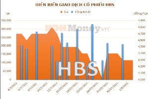 HBS: Doanh thu môi giới chứng khoán quý 2 chỉ có 195 triệu đồng