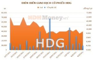 HDG: Lợi nhuận tài chính tăng đột biến nhờ thu hồi khoản cho vay