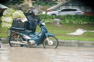Đi chợ hộ hút khách ngày mưa bão