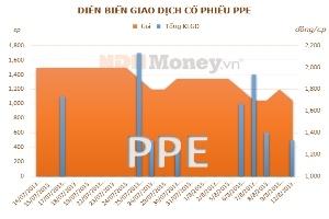 PPE: Quý II/2013 lỗ ròng 744 triệu đồng