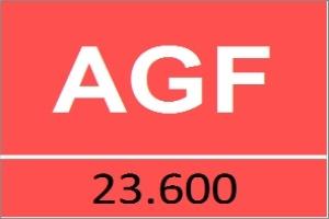 AGF: Lợi nhuận 6 tháng đầu năm đạt 22,97 tỷ đồng