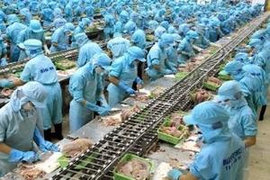 Nguyên liệu thủy sản nhập nhiều nhất từ Đài Loan