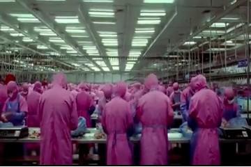 Toàn cảnh công nghiệp thực phẩm Trung Quốc