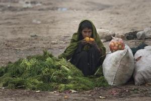Hàng triệu người bị đói, FAO tuyên chiến với nạn lãng phí lương thực