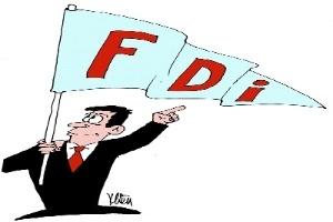 Cân đối chọn lọc FDI