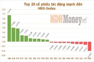 10 cổ phiếu ảnh hưởng nhất tới 'Index' phiên 5/9/2013