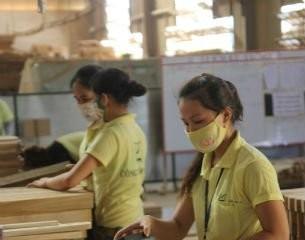 Hãng đồ gỗ Mỹ tìm nguồn cung tại Việt Nam