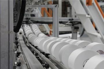 Doanh nghiệp ngành giấy hết thời đủng đỉnh