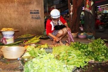 Ngao ngán đi chợ mua rau đắt hơn thịt