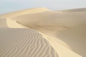 Quảng Nam: Một doanh nghiệp cố tình xuất khẩu cát trắng thô
