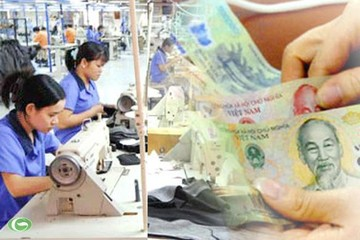 TP Hồ Chí Minh: Thanh tra 25 doanh nghiệp nhà nước về quản lý lao động, tiền lương