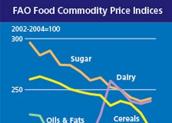 FAO: Giá ngũ cốc toàn cầu giảm mạnh tháng thứ 3 liên tiếp