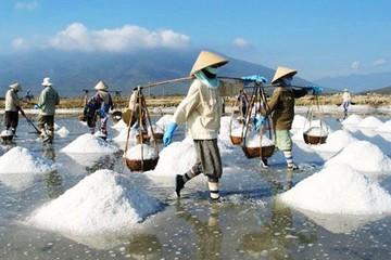 Sản lượng muối tăng gần 30%