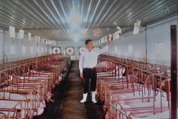 Người bán nhà lấy tiền nuôi lợn