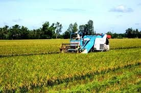 AGPPS bán cổ phiếu cho nông dân với giá ưu đãi