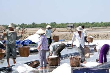 Sản lượng muối 10 tháng tăng hơn 28%