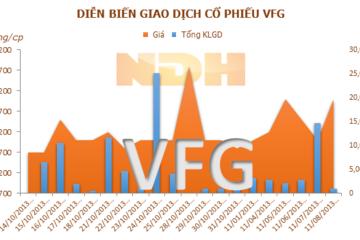 VFG tạm ứng chi trả cổ tức đợt 2 năm 2012-2013