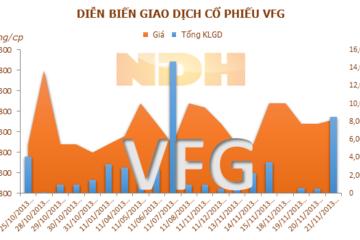 VFG trả cổ tức 10% tiền mặt vào ngày 30/12