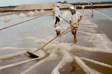 Sản lượng muối 11 tháng vượt 1 triệu tấn, tồn kho trên 85.000 tấn