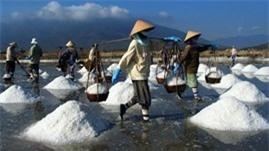 Tồn kho muối tới 225% so với cùng kỳ năm 2012