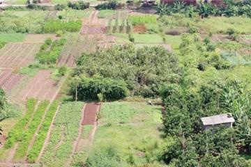 Định giá đất bồi thường: Phải độc lập