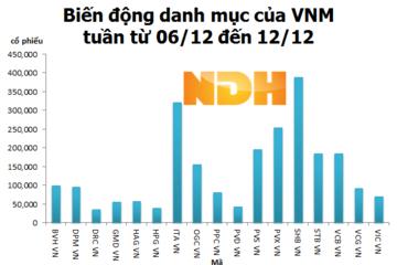 Cẩn trọng trước kỳ điều chỉnh danh mục của Market Vectors Vietnam