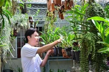 Kỹ sư công nghệ thông tin bán hoa lan