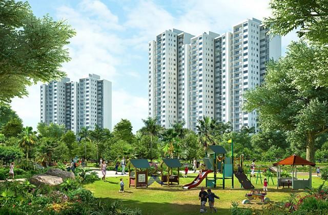tổng hợp dự án chung cư ăn hộ Ecopark