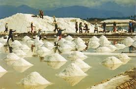 Năm 2013: Sản lượng muối đạt hơn 1 triệu tấn, tăng 28,7%