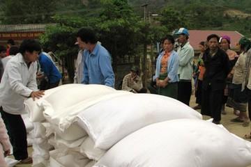 11 tỉnh xin cấp gạo cứu đói dịp Tết