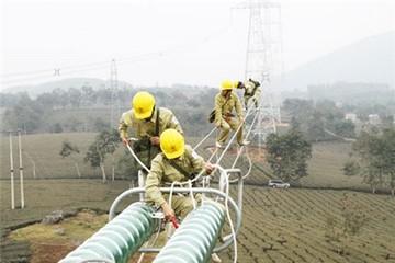 Giá điện, xăng dầu làm méo mó nền kinh tế