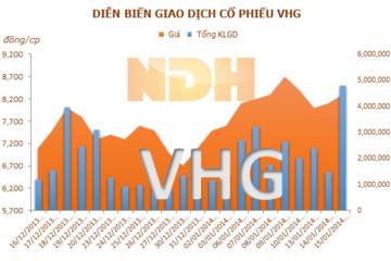 Đẩy mạnh tái cấu trúc, VHG đã thu lại 144,5 tỷ đồng trong quý 4