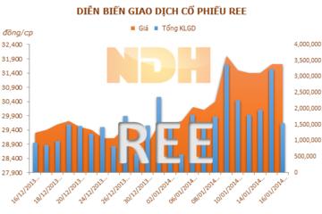 Gia đình Chủ tịch Mai Thanh có gần 1.000 tỷ đồng tại REE