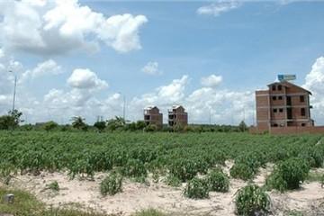 Quy hoạch sử dụng đất huyện Phú Xuyên, Chương Mỹ và Đông Anh