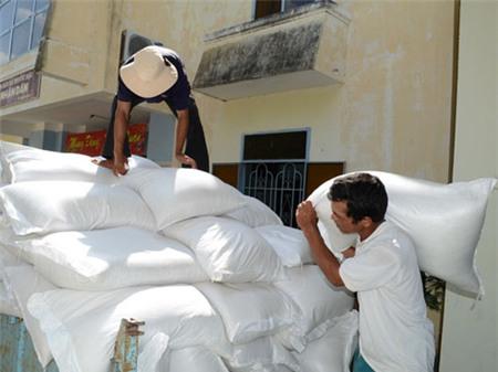 Đề xuất xin cấp gạo cứu đói