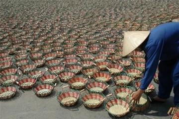 Bắc Giang: Tập trung vốn thúc đẩy nông nghiệp