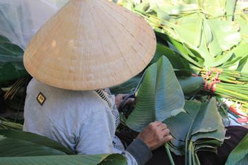 TP. Hồ Chí Minh: Chợ lá dong vào mùa