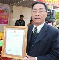 Cấp giấy chứng nhận thương hiệu cho 'Bưởi sạch Sóc Sơn'