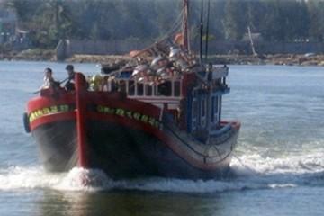 Ngư dân Quảng Ngãi ra khơi mấy tiếng, trúng đậm