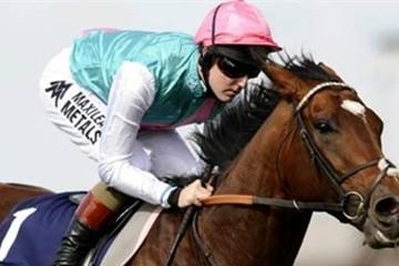 Ngắm chú ngựa trị giá hơn trăm triệu đô