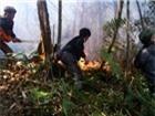 Mùng 3 Tết, cháy rừng tấn công Vườn Quốc gia Hoàng Liên
