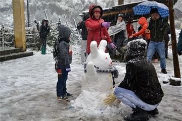 Tuyết rơi trắng Sapa: Tour đắt khách, nhà nghỉ 'hét' giá gấp đôi