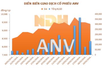 ANV: Năm 2013 lãi 9 tỷ đồng, trả cổ tức gần 60 tỷ đồng