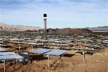"""Nhà máy điện mặt trời lớn nhất cũng gây """"thảm họa sinh thái"""""""