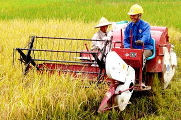 Phát triển nông nghiệp: Cần trẻ hóa tầng lớp nông dân