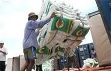 Năm 2014, sẽ xuất khẩu 1 triệu tấn gạo thơm