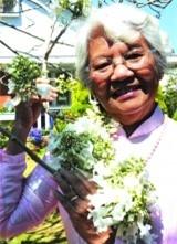 Nữ tiến sĩ và cây phượng trắng duy nhất ở Việt Nam