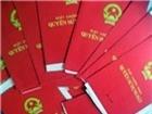 Quảng Ngãi: Chậm cấp sổ đỏ, một chủ tịch xã bị cách chức