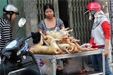 Sự biến mất lặng lẽ của các chợ thịt chó ở Sài Gòn