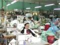 Dệt may Huế: Lên kế hoạch doanh thu tăng 11% nhưng lợi nhuận không đổi